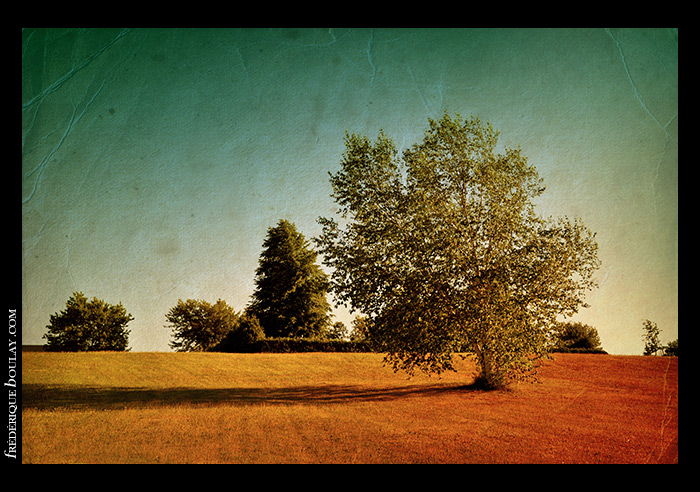 fboulay-photo-vintage1-15